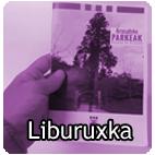 LIBURUXKARA SARTU